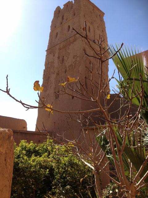 Riad à renover à vendre à Taroudant