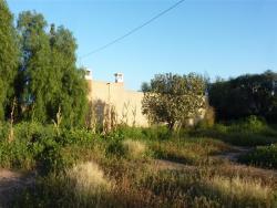 Vente Maison de campagne Taroudant
